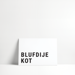5 Cards : Blufdije kot